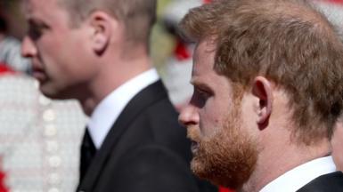 Duke of Cambridge and Duke of Sussex