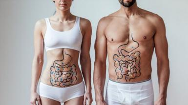 Man and woman with intestines drawn on them
