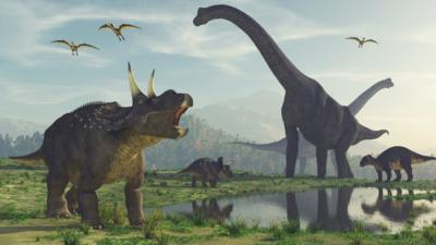 Asteroid 'definitely' to blame for dinosaur extinction, say ...