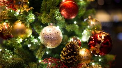 Why do we have Christmas trees? - CBBC Newsround