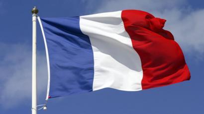 Image result for french flag