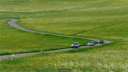 Carros circulam numa via sinuosa no sul da Alemanha, em meio a campos de canola