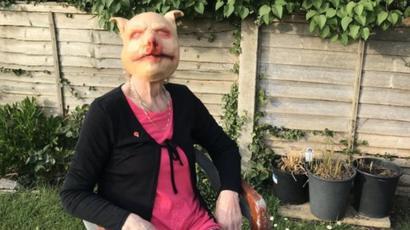 Coronavirus cat mask