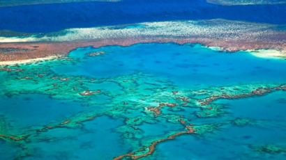 Great Barrier Reef Outlook Very Poor Australia Says Bbc News