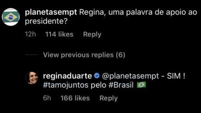 Reprodução de conversa de Regina Duarte no Instagram