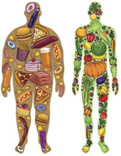 Qué son y cómo se miden las calorías que tanto nos obsesionan ...