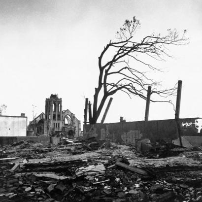 Hiroshima: los árboles que sobrevivieron a la bomba atómica y hoy ...