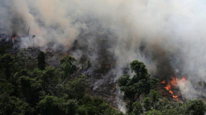 De Boycottbrazil A Amazônia No G 7 Reação Internacional à