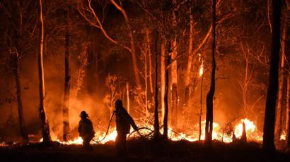 Image result for australia fire images