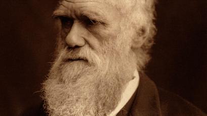 Darwin Origin Of Species Draft Stopped From Leaving Uk Bbc