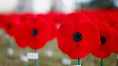 Has The Core Message Of The Poppy Appeal Been Diluted Bbc News