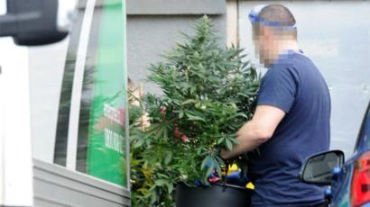 Workers At Sophisticated Cannabis Factory In Paisley