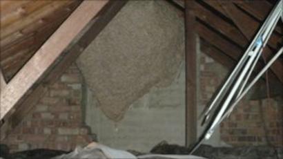 Hidden Secrets regarding Get Rid Of Wasp Nest