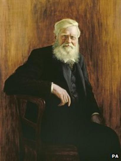 Why Does Charles Darwin Eclipse Alfred Russel Wallace Bbc