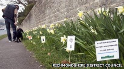 Dog Mess Markers To Shame Richmond Pet Owners Bbc News
