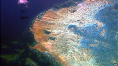 Unesco Delays Endangered Great Barrier Reef Decision Bbc