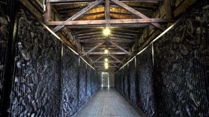 Thieves steal Holocaust victims\u0027 shoes at Polish museum