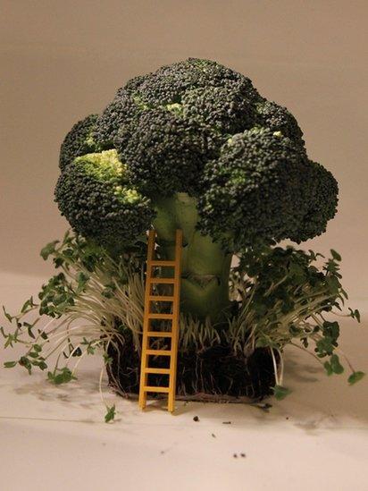Broccoli tree and Lego stepladder