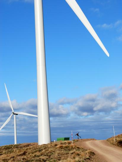 Whitelees wind farm