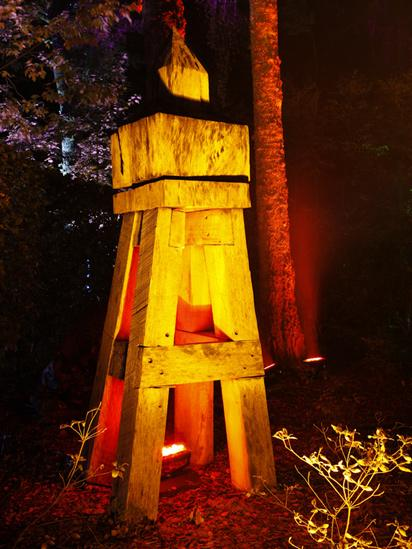 Tress lit up in the Enchanted Forest