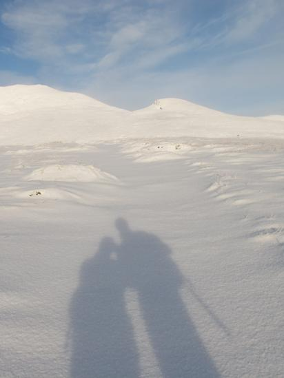 Shadows of people on fresh snow