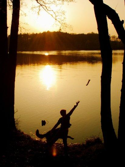 Throwing a stick in to a lake