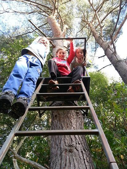 Oscar, Isla and Ruby in Binning Woods