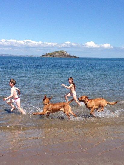 Fraser, Jemma and dogs Duke and Rusty ran along the beach