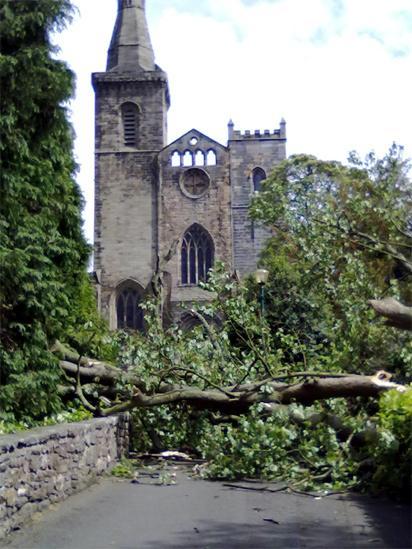Tree blocking a footpath near Dunfermline Abbey
