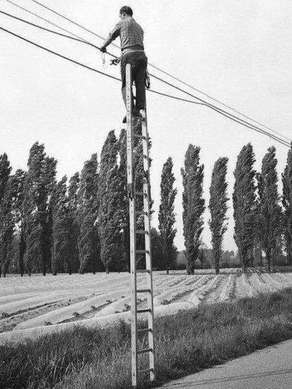 Man working up a ladder