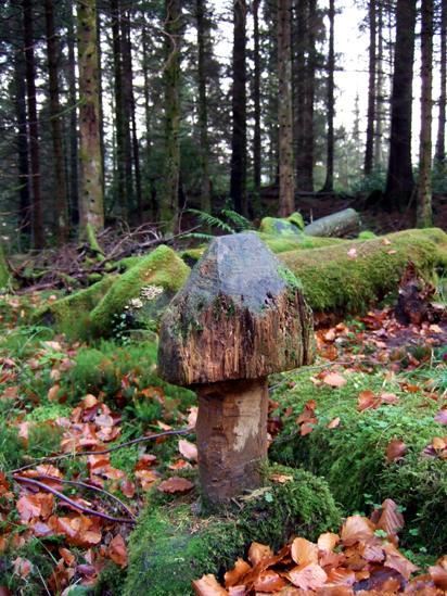 Wooden mushroom sculpture