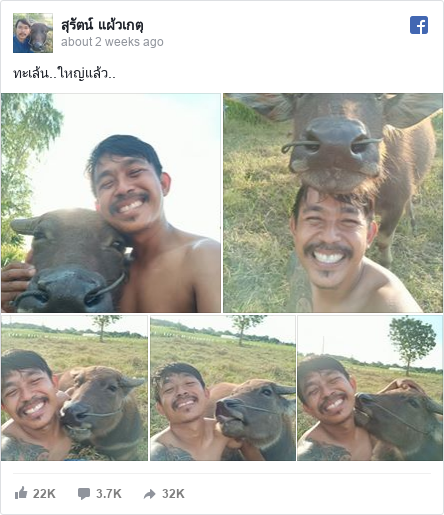 Facebook post by สุรัตน์: ทะเล้น..ใหญ่แล้ว..