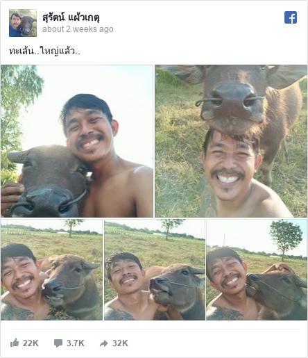 Facebook bởi สุรัตน์: ทะเล้น..ใหญ่แล้ว..