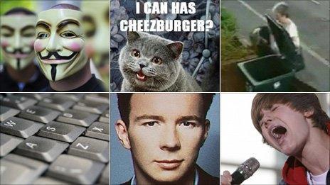 4chan kittens Murder of