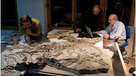 Scientists and fossil (Ortega/Sanz)