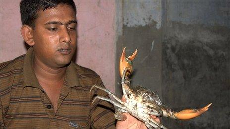 A buyer holds a crab