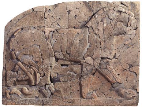 Lion bas relief