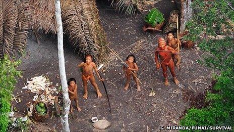 Panoan Indians (Gleison Miranda/FUNAI/Survival