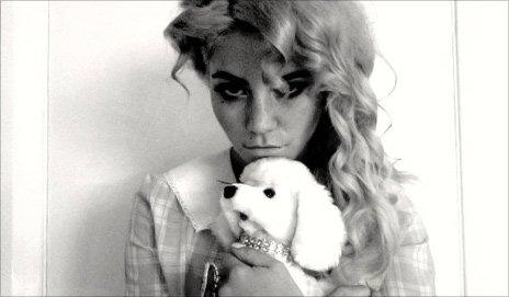 Electra Heart - puppy