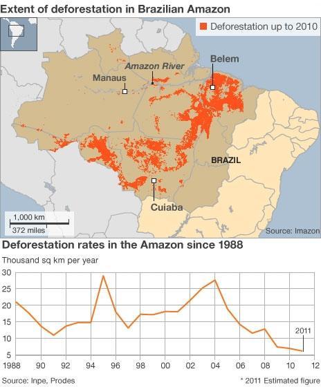 Graphic showing Amazon deforestation