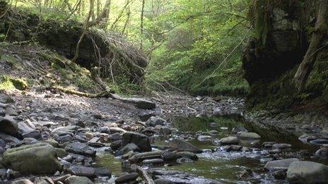 Afon ym Mannau Brycheiniog