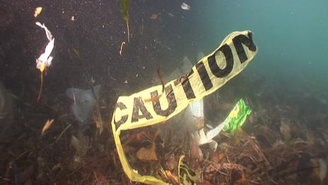 Rubbish found at the bottom of Sydney Harbour Bridge