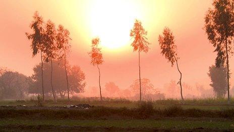 Farmland in Punjab