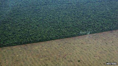 Aerial photograph of a tract of jungle cleared by loggers in the Xingu Indigenous Park on 19 November 2012