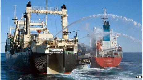 Japan's Nisshin Maru whaling ship (L), Sea Shepherd's Bob Barker (C) and the Sun Laurel tanker in the Southern Ocean (25 Feb 2013) Image supplied by Sea Shepherd