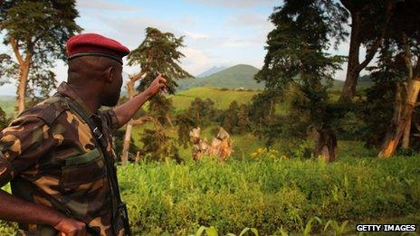 A rebel soldier looks over swathes of green in the east of the Democratic Republic of Congo