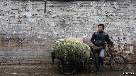 A street vendor selling stems of garlic waits for customers at a market in a half-demolished old residential site where new and luxury skyscrapers will be built in Beijing on 25 February 2013