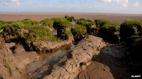 Goldcliff, near Newport in South Wales