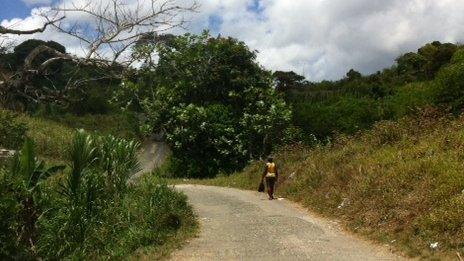 Jamaican scenery