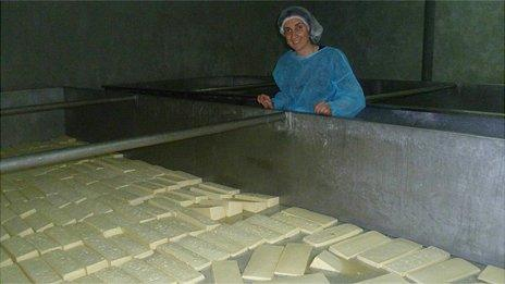 Nino Zambakhidze checking cheese production at her diary